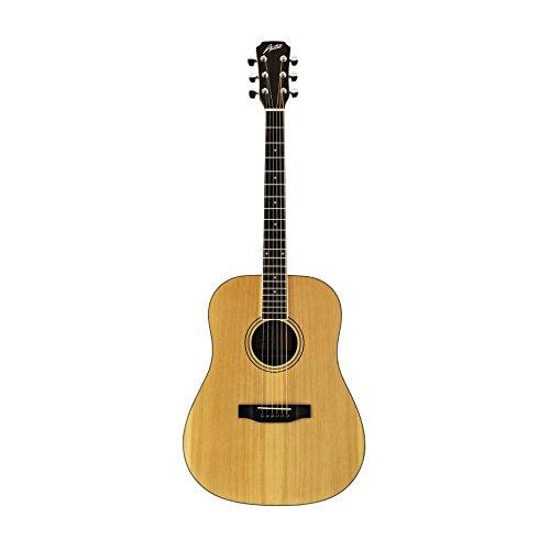 Austin Guitars AA25-D Dreadnought Acoustic Guitar