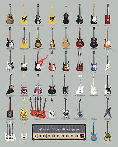 Pop Chart: Poster Prints (16x20) - Guitar Infographic - Printed on...